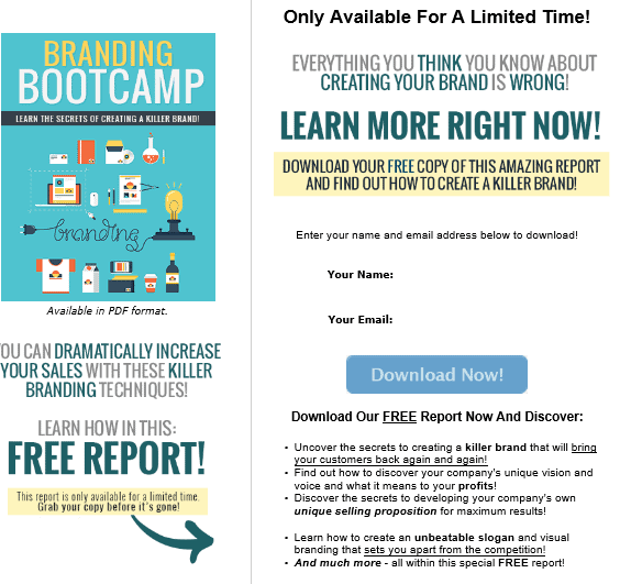 Branding Bootcamp PLR HTML Squeeze Page