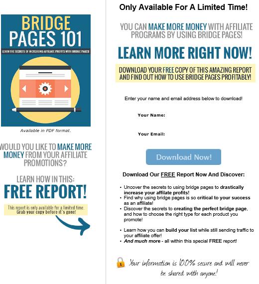 Bridge Pages 101 PLR Squeeze Page