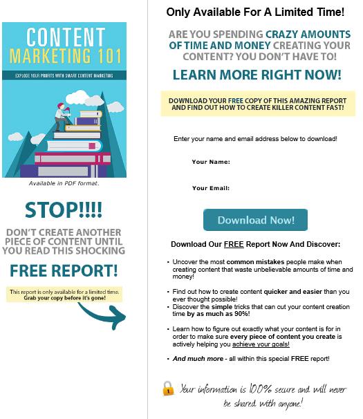Content Marketing 101 PLR Lead Magnet Squeeze Page