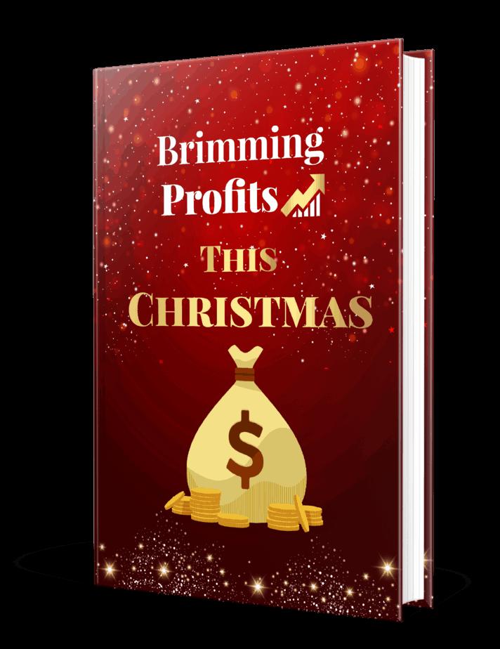 Brimming Profits This Christmas PLR eBook Resell PLR