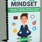 Entrepreneur Success Mindset PLR Report eCover