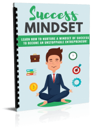 Entrepreneur Success Mindset PLR Report eCover