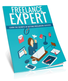 Freelance Expert PLR Report eCover