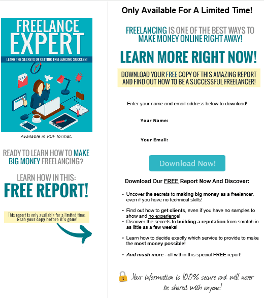 Freelance Expert PLR Squeeze Page