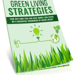 Green Living Strategies PLR Lead Magnet Kit