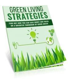 Green Living Strategies PLR Report eCover