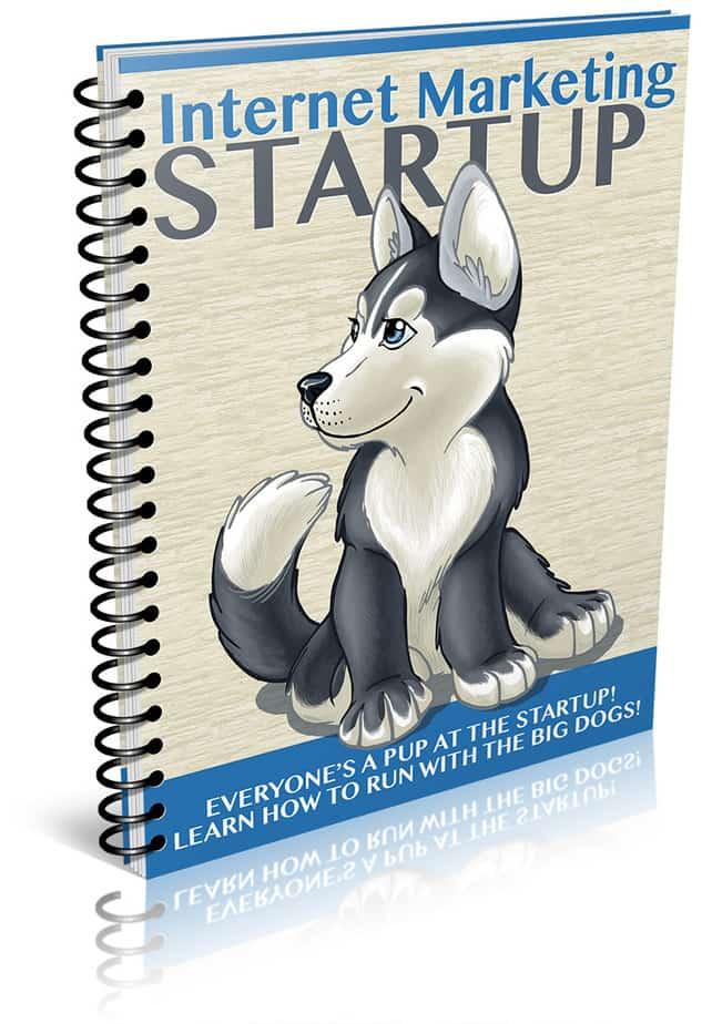 IM Startup PLR Report eCover
