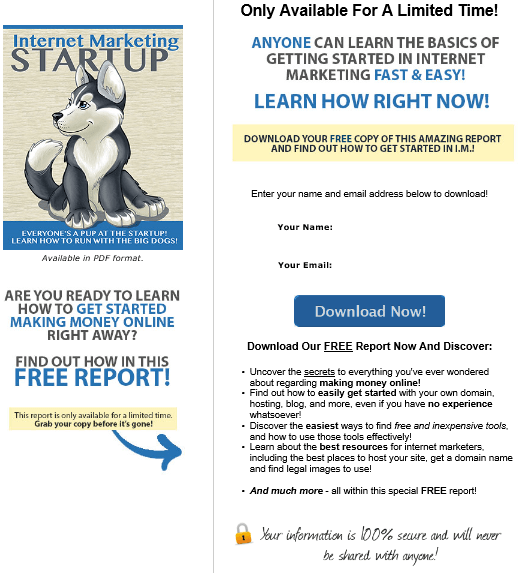 IM Startup PLR Squeeze Page