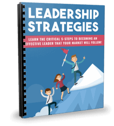 Leadership Strategies PLR Report eCover