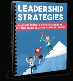 Leadership Strategies PLR Report eCover