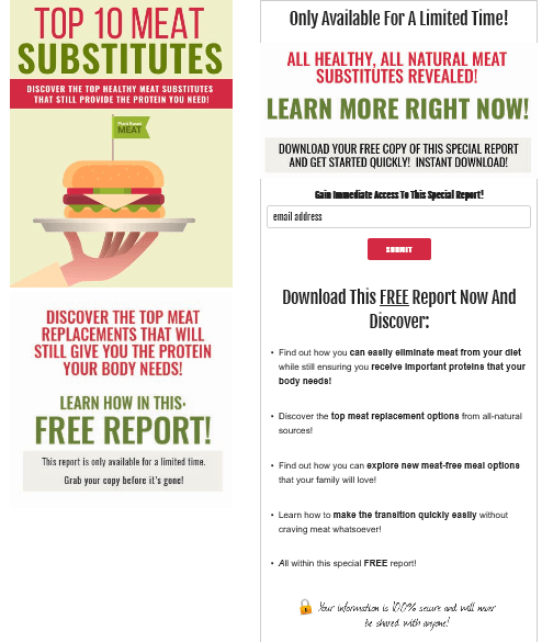Meat Substitutes PLR Squeeze Page