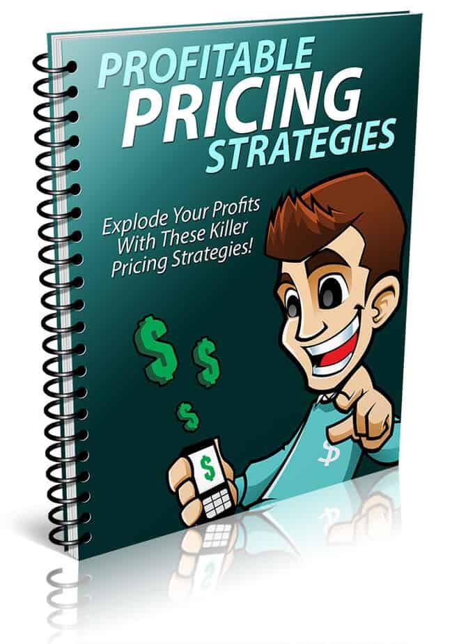 Profitable Pricing Strategies PLR Report eCover
