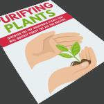 Purifying Plants PLR Lead Magnet Kit