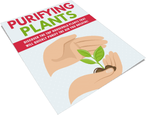 Purifying Plants PLR Report eCover