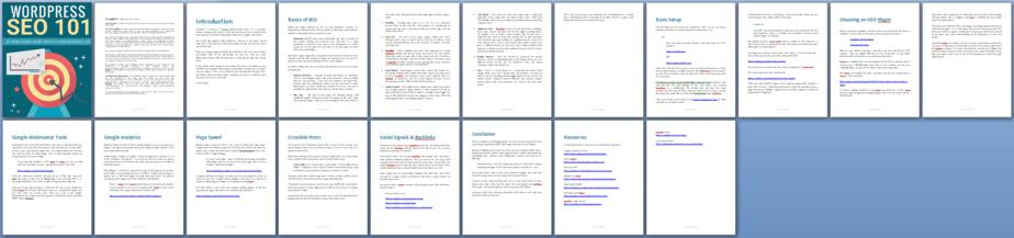 Wordpress SEO 101 PLR Report Sneak Preview