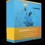 5 Quality Growth Mindset PLR Articles