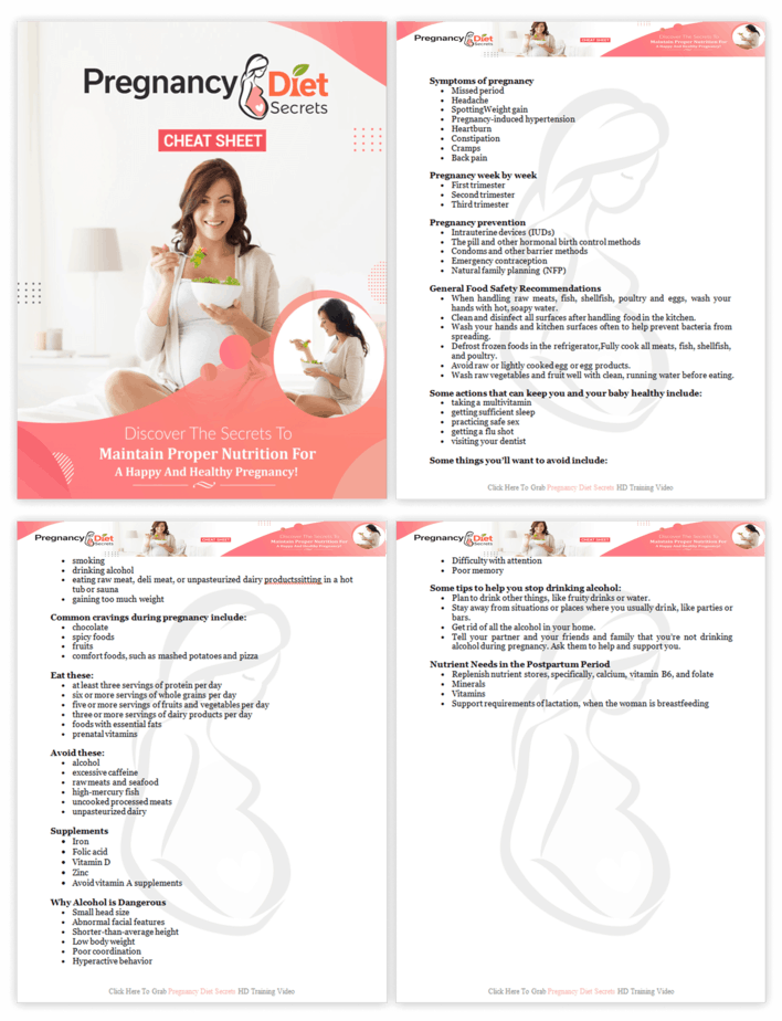 Pregnancy Diet Secrets PLR Sales Funnel Cheatsheet Screenshot