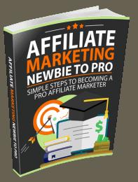 Affiliate Marketing Newbie To Pro Ebook